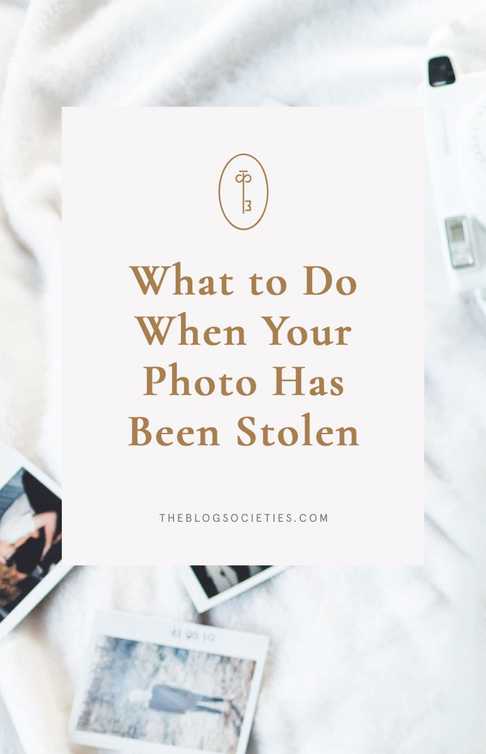 What To Do When Your Photo Has Been Stolen   The Blog Societies
