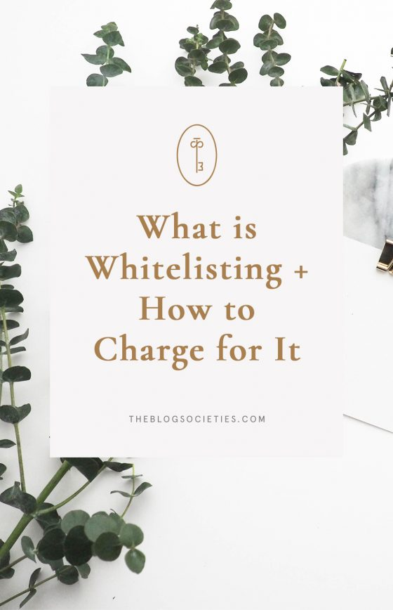 What Is Whitelisting + How To Charge For It