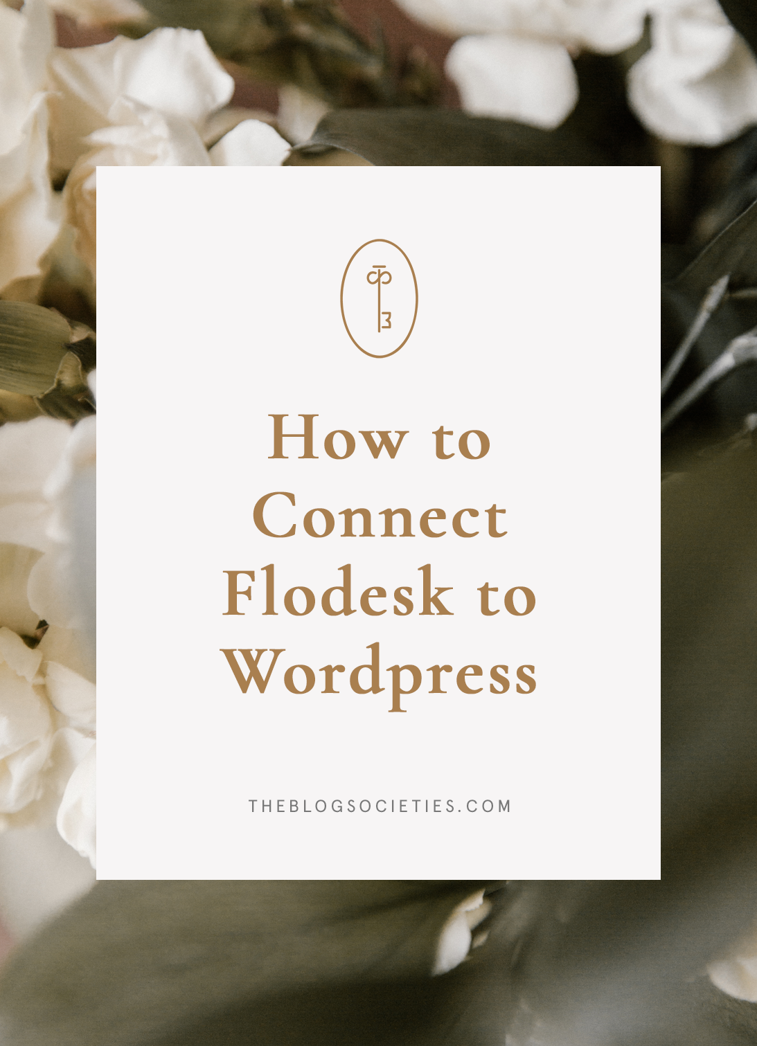 How To Connect Flodesk To WordPress For Bloggers